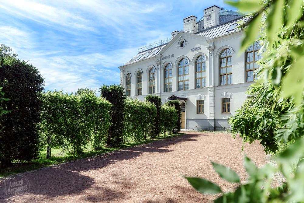 Загс петродворцового района г петергоф